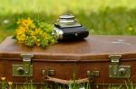 luggage-1482618_1920